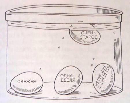 полезные советы, лайфхаки, лайфхаки для кухни, лайфхаки для дома