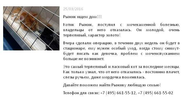 Новое в поликлиниках москвы