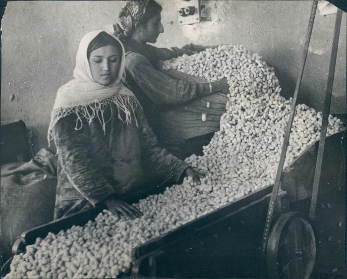 Ткацкая Фабрика в Тифлисе, 1930 год.
