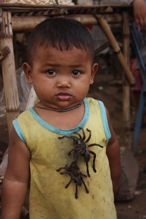 Как в Камбодже едят пауков.