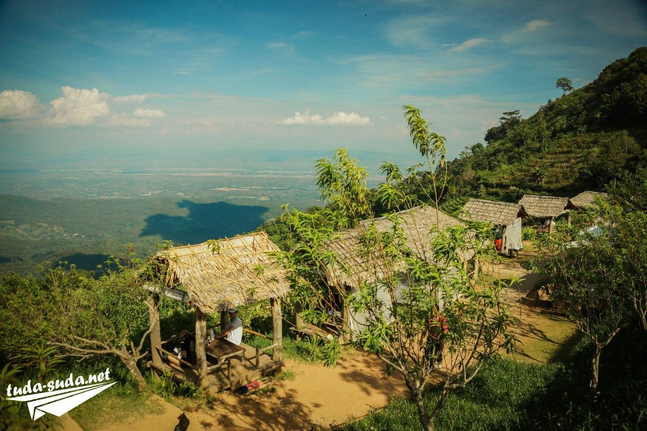 Клубничные плантации в Mon Jam