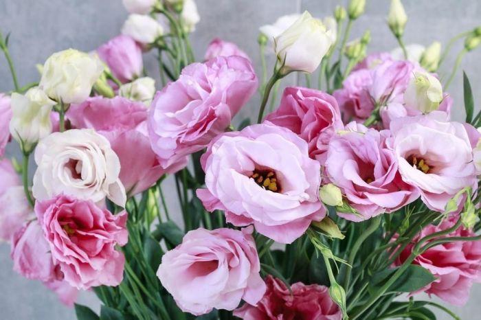 Восхитительная эустома. | Фото: growyoursecretgarden.com.