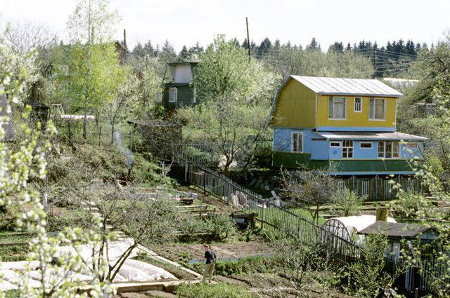 Дачный статус. Зачем садоводов хотят приравнять к местным жителям?