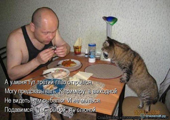 Юморная котоматрица 15