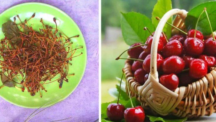 Плодоножки вишни и черешни — знаменитое лекарство для лечения и профилактики многих болезней