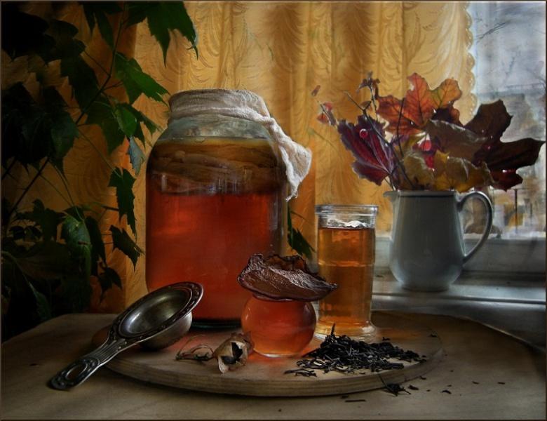 Чайный гриб: все секреты напитка  (как вырастить, ухаживать, употреблять)
