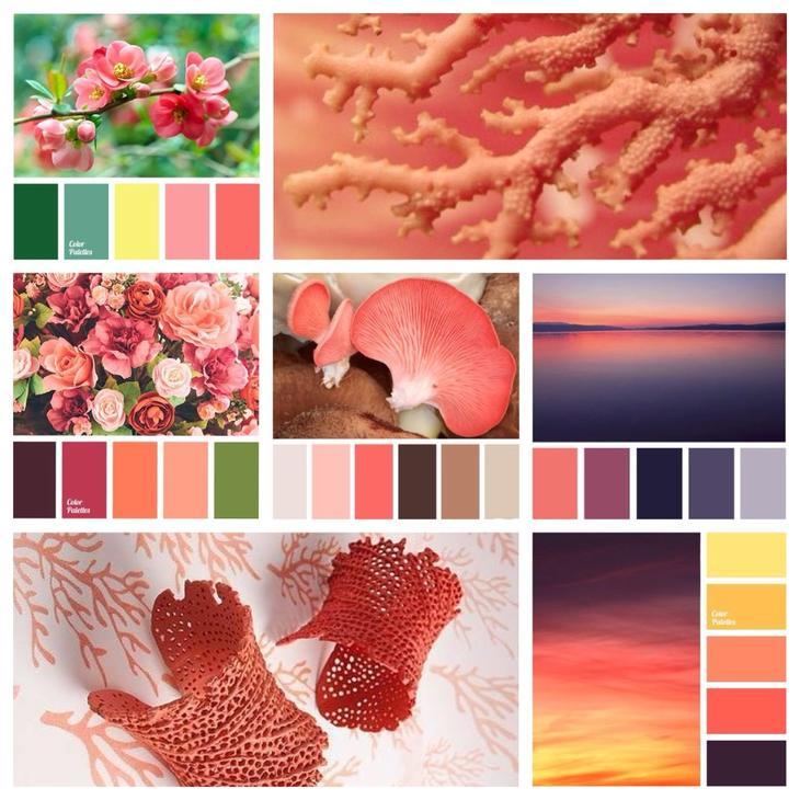 сочетания кораллового цвета