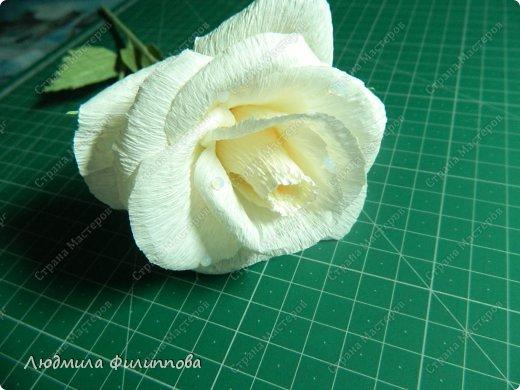 Поделки розы из бумаги гофрированной бумаги