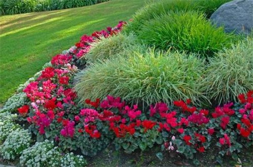 Цветники своими руками. Фото помогут преобразить ваш сад.