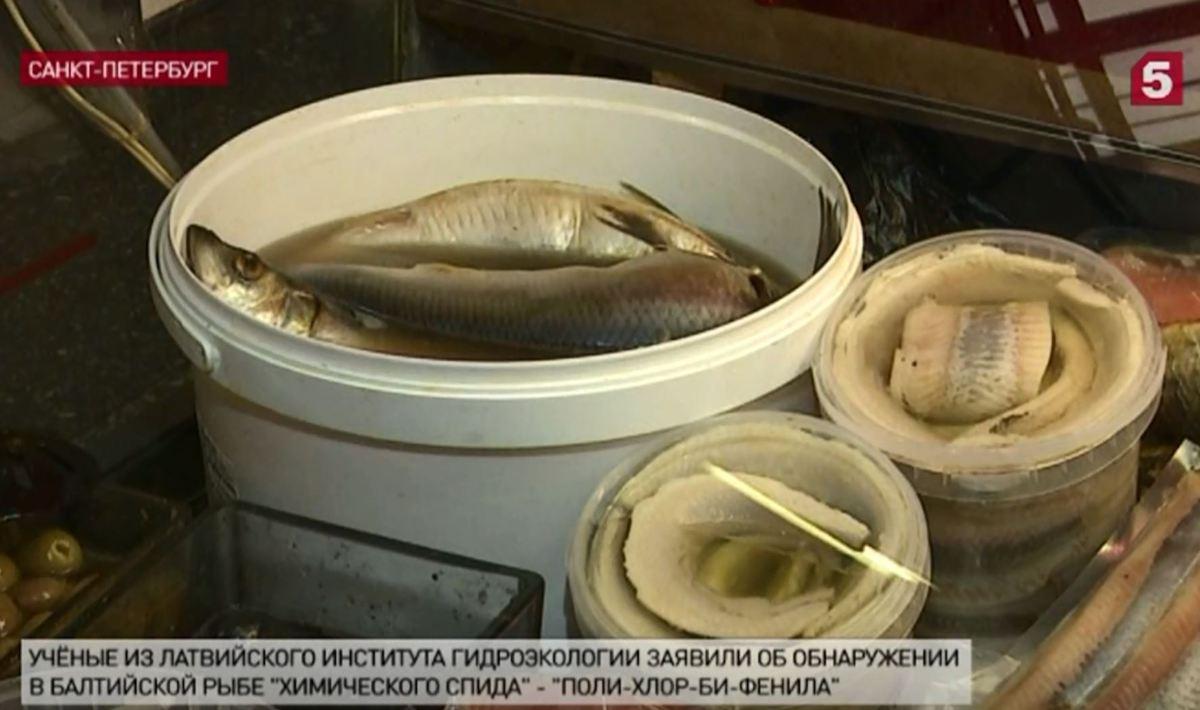 В лососе и селедке нашли «химический СПИД»