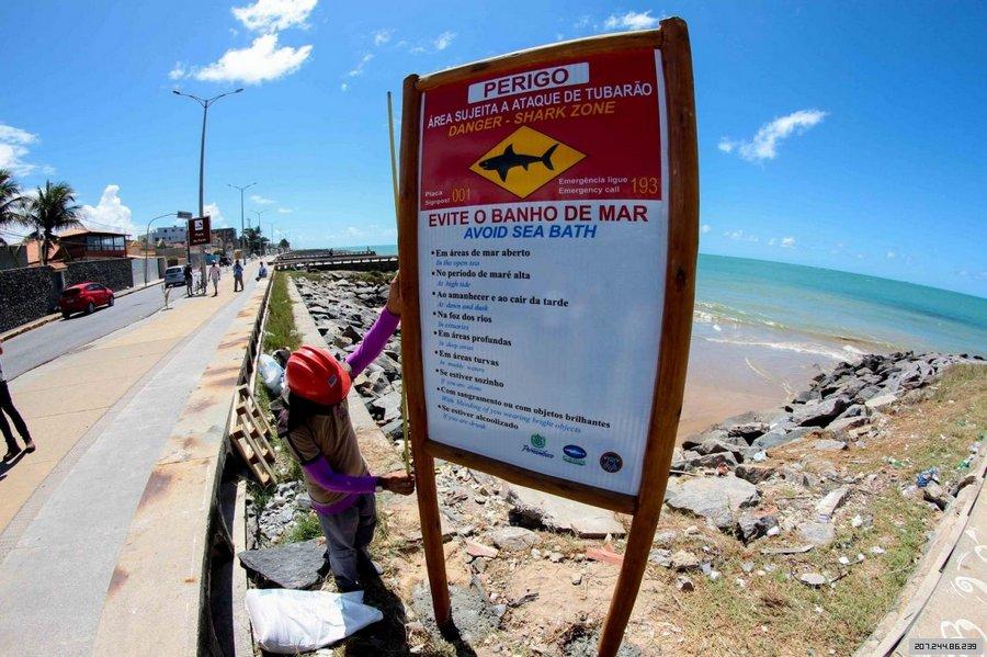 Пляжи Бразилии самые опасные по нападениям акул