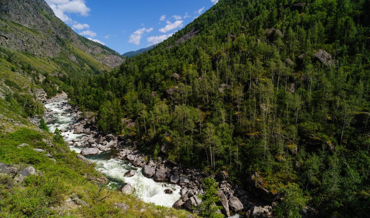 Алтай. красота, природа, россия