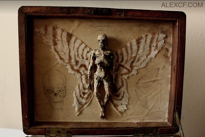 В подвале старого лондонского особняка нашли тела странных существ интересное, лондон, непознанное, томас мерлин