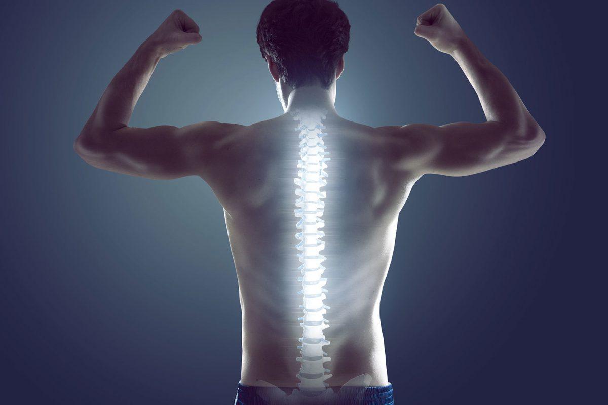 Главные враги здоровой спины (из книги «Цигун для позвоночника»)