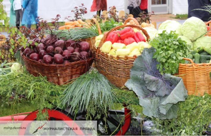 Роскачество рассказало о самых качественных продуктах в России