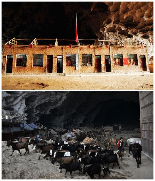 Благодаря Фрэнку Беддору в деревне Чжундун появилась электричество, телевидение, школа и породистый скот.   Фото: fishki.net.