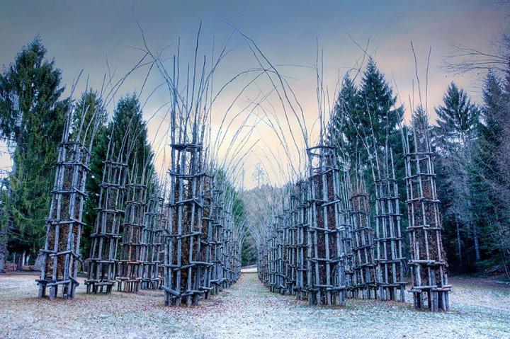 собор из деревьев джулиано маури (2)