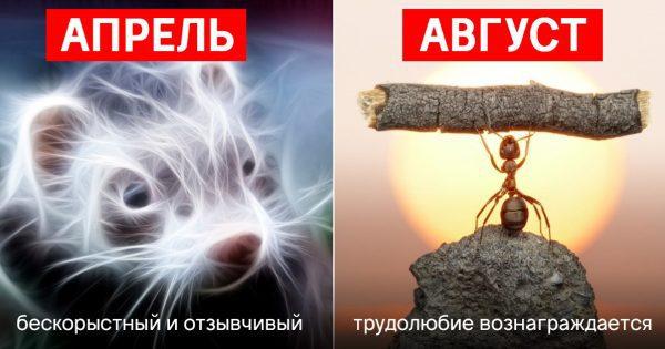 Древнеславянский «звериный» гороскоп наших предков. Точность описания и характеристик поражает!