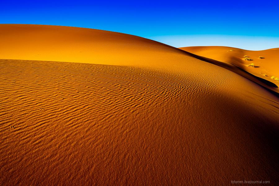 Прогулка по Сахаре