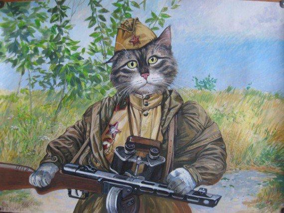 Кот - зенитчик