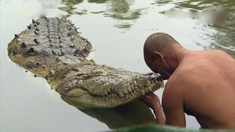 Чито (настоящее имя Гильберто Шедден), около 57 лет, рыбак, гид-натуралист, Сикиррес, Коста-Рика животные, жизнь, крокодил, люди, почо, рыбак, чито