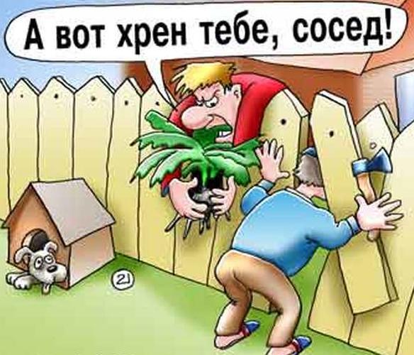 devushki-habarovska-po-vizovu