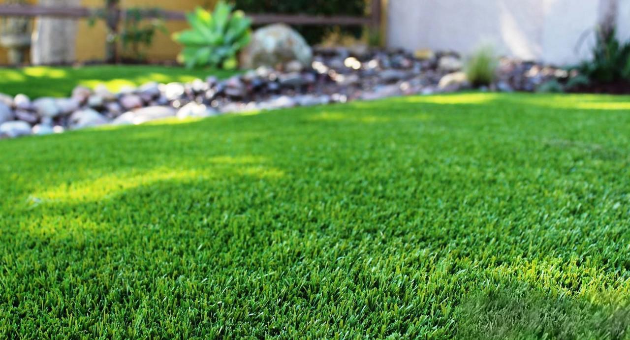 Идеальный газон на участке: как и когда сажать газонную траву