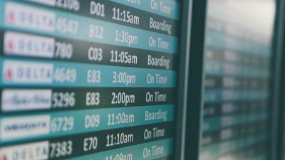 Руководство аэропорта Домоде…