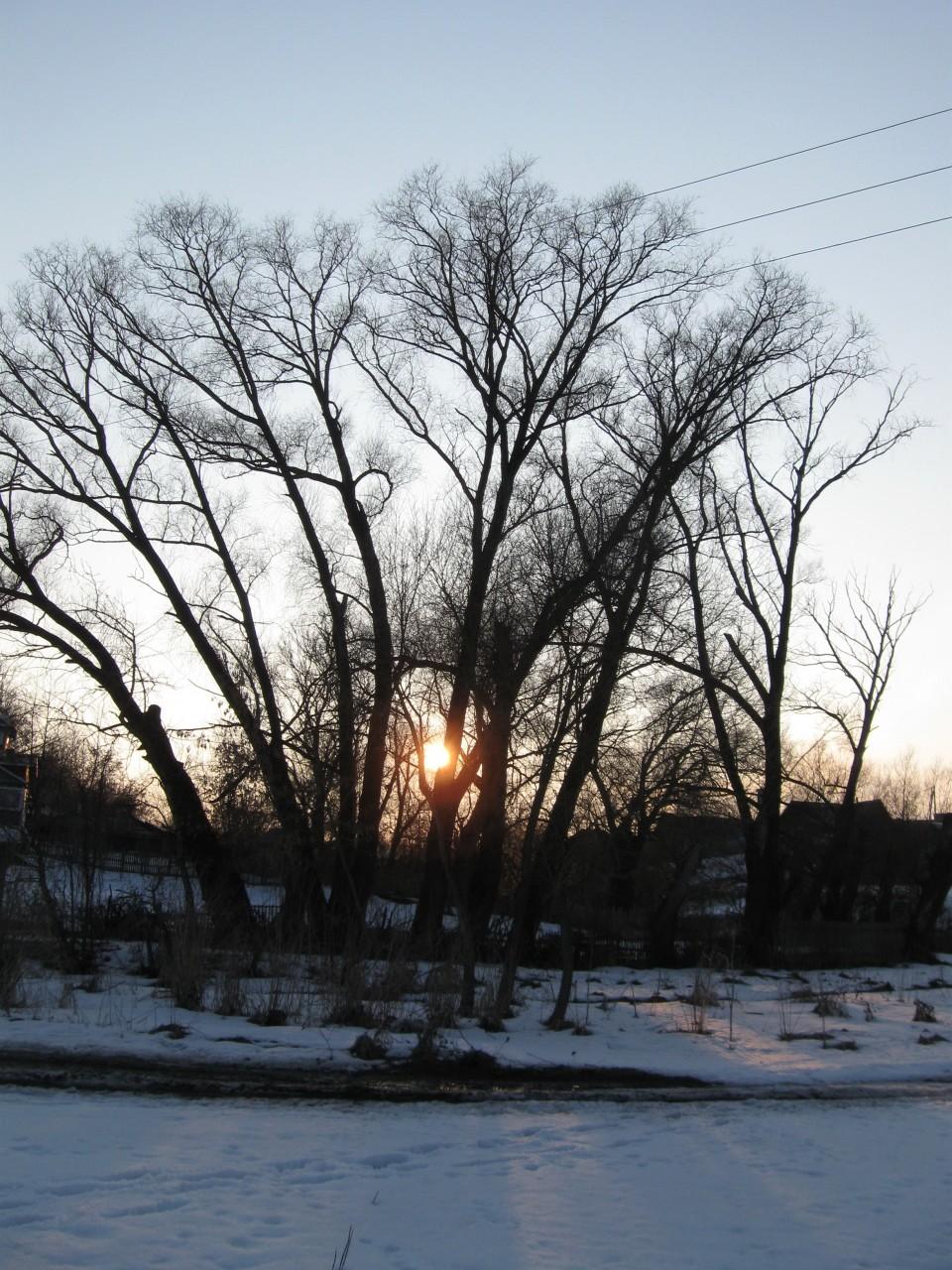 Мгновения нашей жизни: весна поселилась в нашей душе