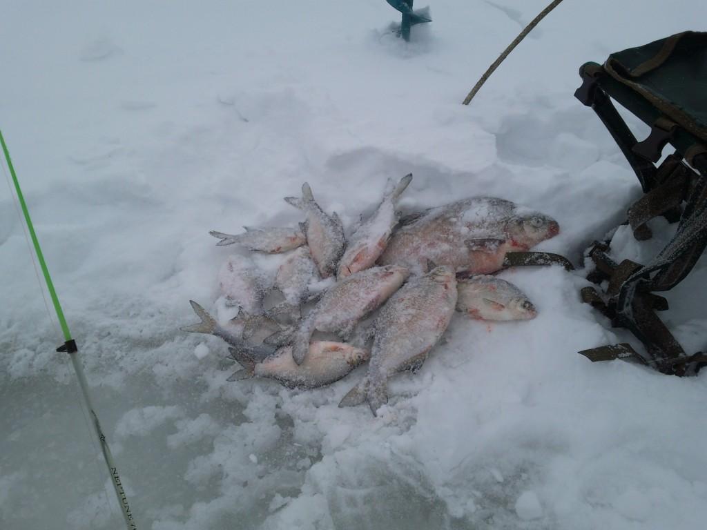 способы ловли рыбы на поплавочную удочку