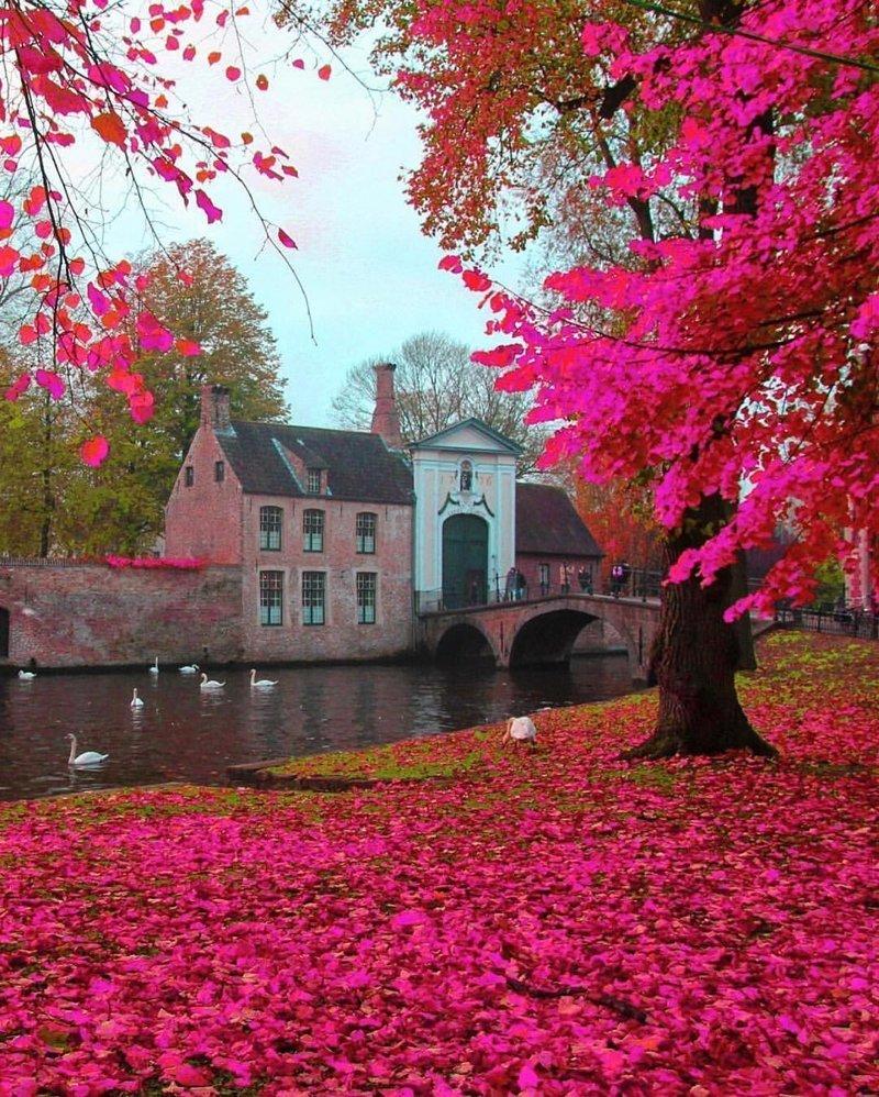 Brugge, Belgium красивые места, мир, планета, природа, путешествия