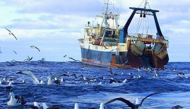 Пора сматывать удочки: Россия оставила Украину без рыбы в Азовском море!