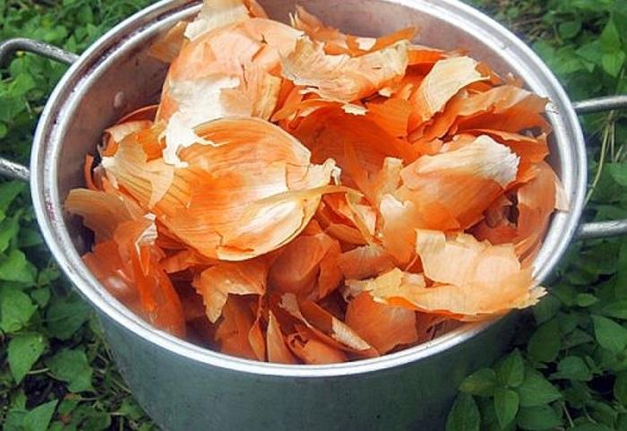 Бесплатное органическое удобрение, от которого томаты станут слаще меда