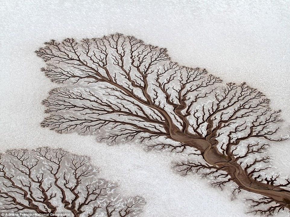 15 природных оптических иллюзий, которые выглядят круче самого изощрённого Фотошопа
