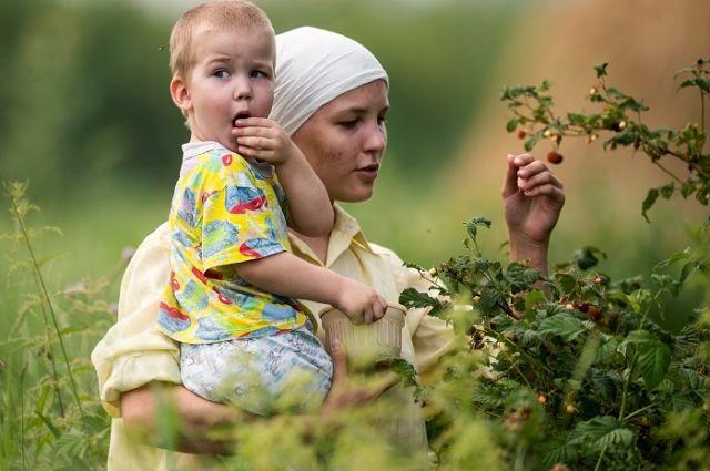 12 часов в пути. Где выращивают малину, продающуюся на рынках Москвы?