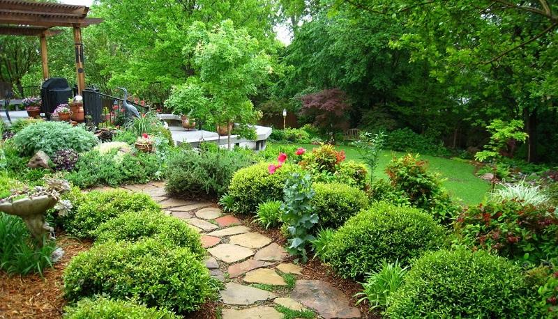 Идеи сада для ленивых. Можно не ухаживать - растёт само!