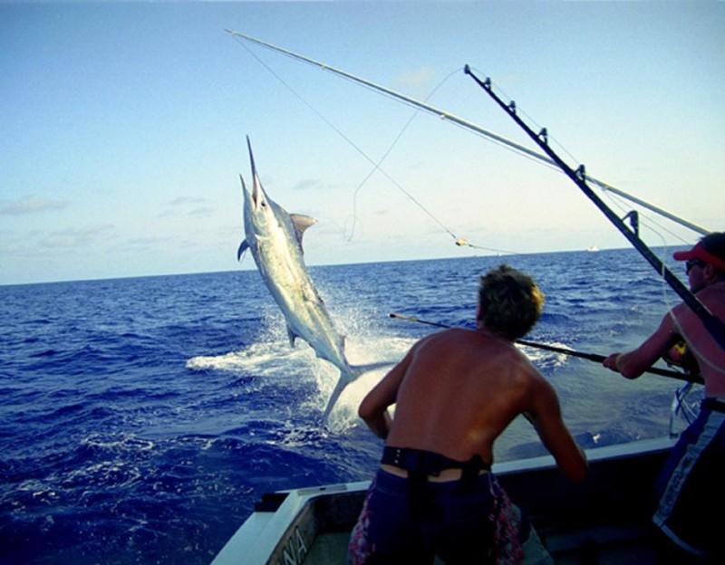 ограничение по ловле рыбы с апреля по май в крыму