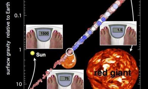 Измерение гравитации звезд
