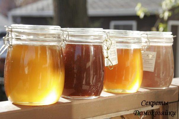 здоровье,рецепты с медом,дневник,комментарии,блог,блоги,какой,каких,заболеваниях,помогает...
