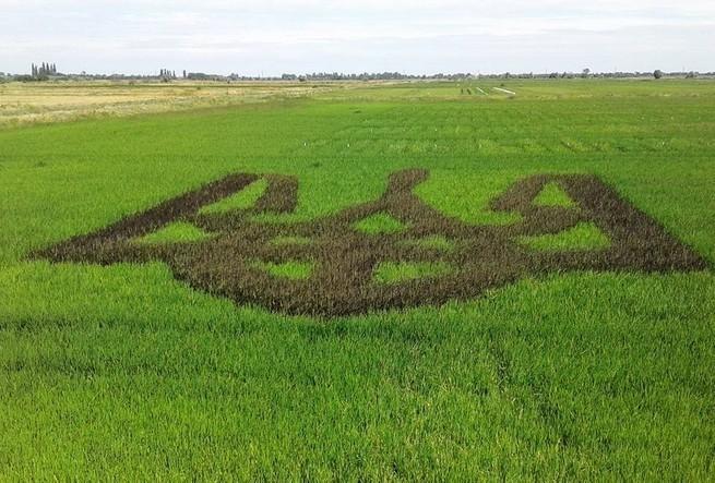 Украина стоит на пороге земельного дерибана