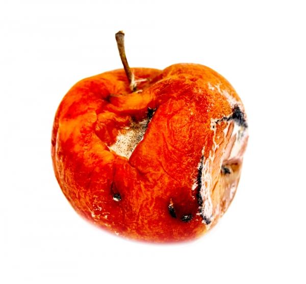 позиция яблока по крыму автомобилистов мечтает