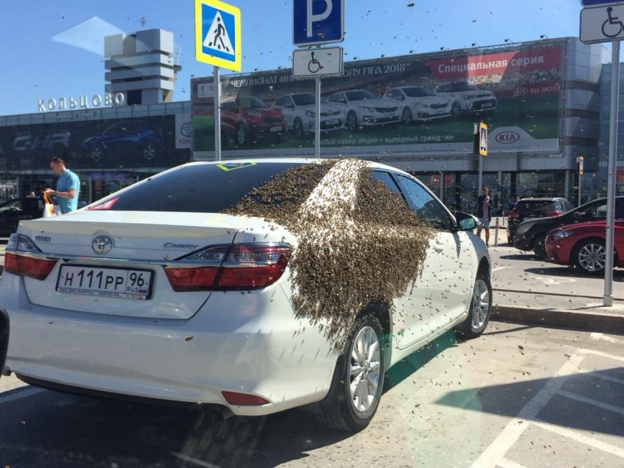Неожиданная карма за парковку
