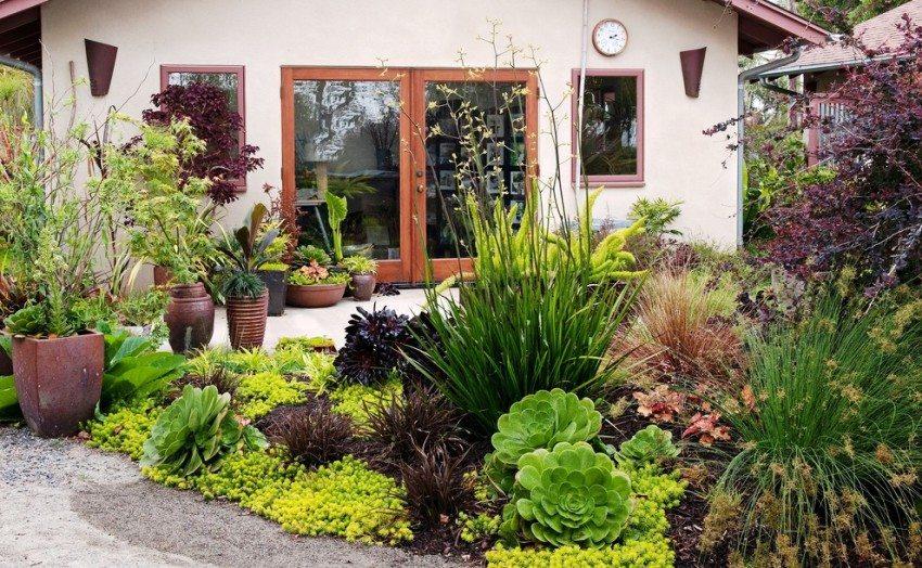 Небольшой дачный двор густо засажен цветами и кустарниками
