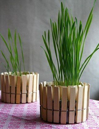 Чтобы сделать такие симпатичные горшочки для растений, нужны лишь прищепки и пустая консервная банка.