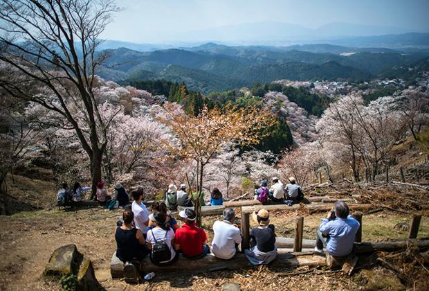 Гора Йосино в префектуре Нара