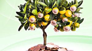 Как привлечь в дом богатство и любовь?