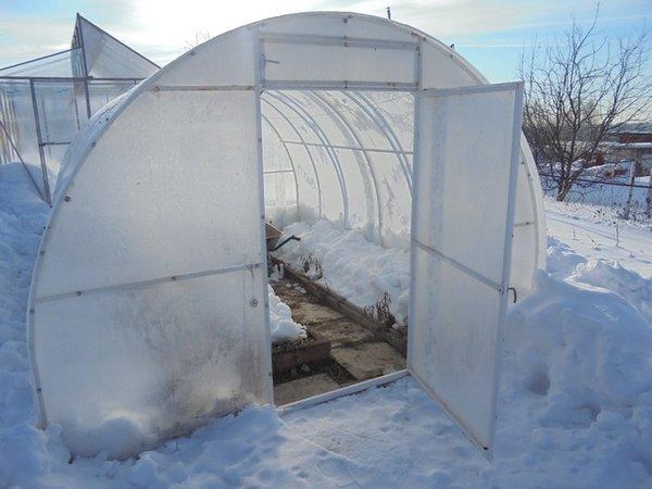 А вы закидывайте снег в теплицу? Четыре аргумента в пользу этого метода