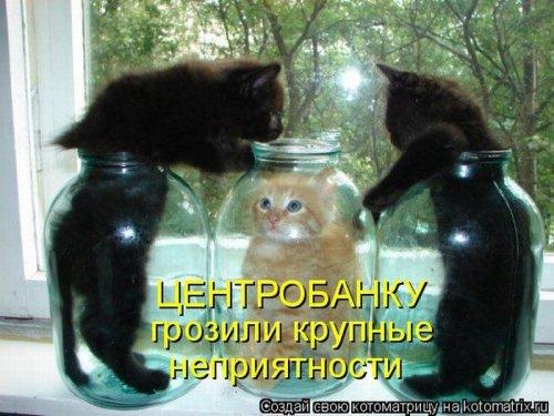 Финансы)
