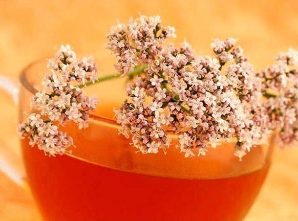 Укроп, мёд и валериана: всего 1 столовая ложка сотворит чудо с твоими сосудами!