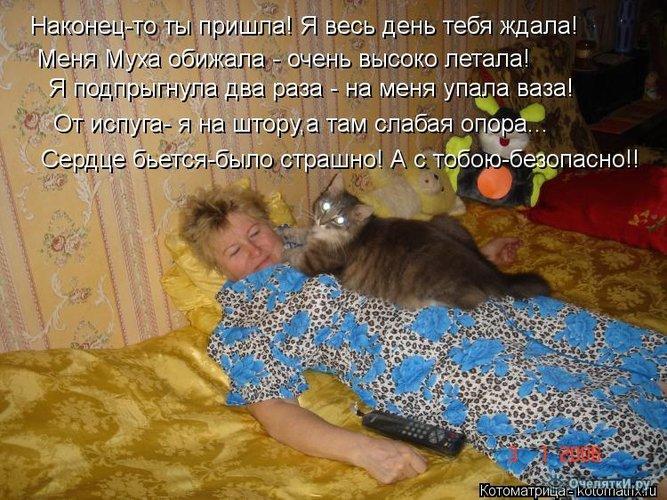 Юморная котоматрица 14